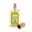 AMBIENTADOR SPRAY  100 ML VERBENA