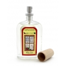 AMBIENTADOR SPRAY  100 ML WINTER FRUIT